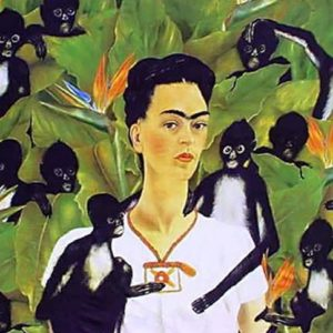 Frida Pareo/Shawl - Monkeys